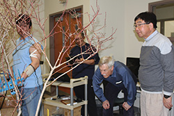 Kim uses one of the shakers on the blueberry bush while fellow graduate student Kiseok Sung records the force the shaker has on Kim's muscles as Andris Frievalds and Fumioni Takeda observe the test.